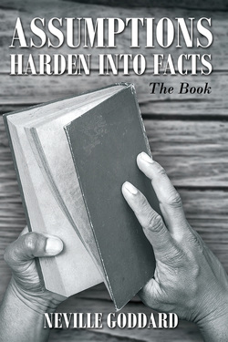 Assumptions Harden Into Facts, The Book